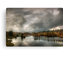 Afternoon light, Tarn Hows Canvas Print