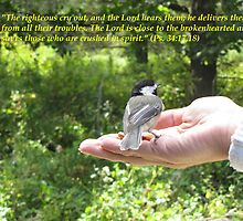 Psalm 34:17,18 by hummingbirds
