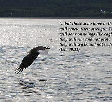 Hope Series: Isa. 40:31 by hummingbirds