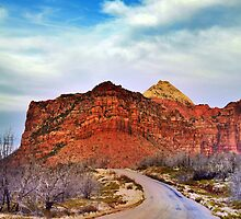 Road to Kolob Reservoir by Ryan Houston