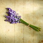 Bluebells Bouquet by audah