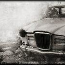 Wreck by Citizen