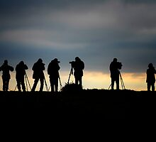 Twitchers ! by Simon Duckworth
