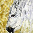 Pony by Lydia Cafarella