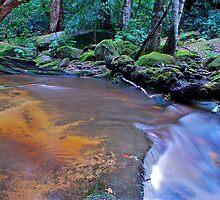 Somersby Stream 6-11-10 by Warren  Patten