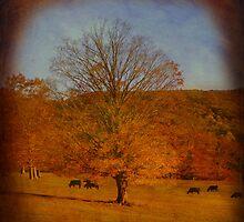 Golden Autumn by Sharksladie