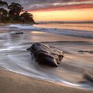 Early Morning at Hinsby Beach, Tasmania #3 by Chris Cobern