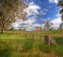 Peaceful II - Princess Hwy, Nairne, Adelaide Hills, SA by Mark Richards