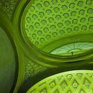 Green balance by Aleksandra Misic