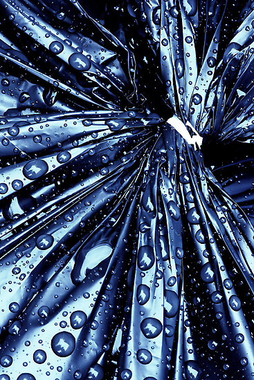 A drenched garbage bag by Bob Daalder