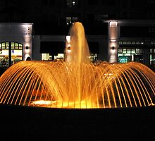 Golden Fountain at Night by imagetj