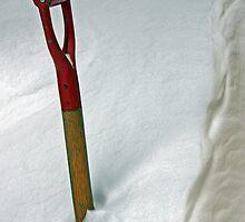The Snow Shovel - Dunrobin Ontario by Debbie Pinard