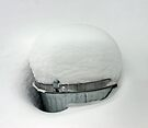 Snow on the Garbage Can - Dunrobin, Ontario by Debbie Pinard