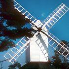 Cromer Windmill, Hertfordshire, England by nealbarnett
