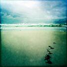 Wavedrift by Jim Moore