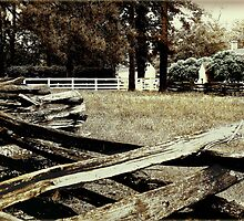 Ye Old Fence and Pasture by Roger Sampson