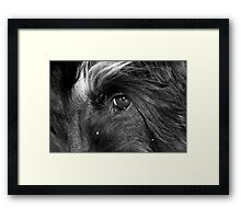 I can see the idleness in the corner of your eye.... Framed Print
