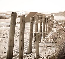 Beach Fence by pennyswork