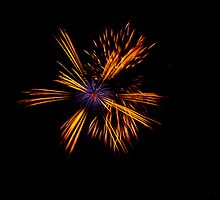 Blackheath Fireworks by Dawn OConnor