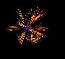 Blackheath Fireworks by Dawn OConnor