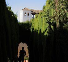 Approaching the Summer Palace through the Generalife, La Alhambra by mochamocha