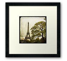 Autumnal Paris Framed Print