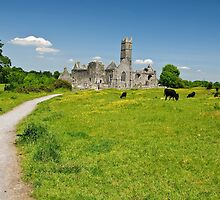 Quin Abbey, County Clare, Ireland by upthebanner
