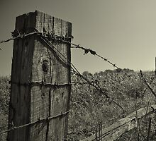 Worn Fence by AaronJ