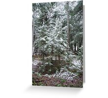 First Dusting Greeting Card