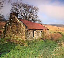 Old House at Glendun glen, Co. Antrim, Ireland. by Fred Taylor