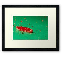 Splash of Colour 10 Framed Print
