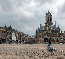 Delft from a Pigeon's point of view  by John44
