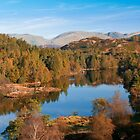 tarn hows by bfc1