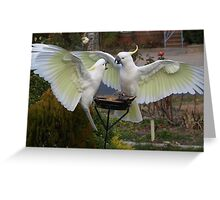 Scram, I was here first! Greeting Card