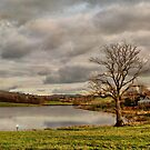 Colne Reservoir. by Irene  Burdell