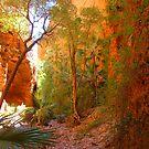Echidna Chasm, WA. by Liz Worth