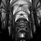 Vault, Barcelona Cathedral by Nicole Shea