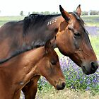 Mother and Daughter by julie anne  grattan