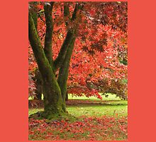 Autumn Red by Patsy Smiles