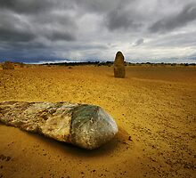 Fallen Pinnacle, Nambung Nat. Park,  W.A. by Andrew Wallace