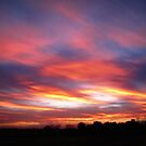 Amazing Sunset by Linda Miller Gesualdo