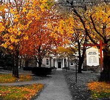 Sturbridge Hall by Frank Garciarubio