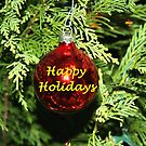 Happy Holidays Ornament by DebbieCHayes
