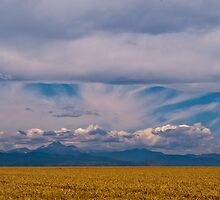 Colorado Mountains And Grain Fields by Greg Summers
