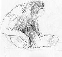 Howler Monkey by WoolleyWorld