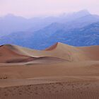 Dune-early morning dunes in Death Valley by mypic