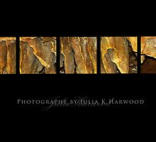 Honeycomb  ~ Signature Series by Julia Harwood