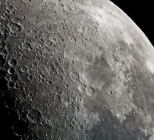 "First Quarter Moon - Highland Road Park Observatory - 20"" OGS by Briar Richard"