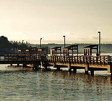 Watchin' The Tide Roll Away... by DeeprBlue