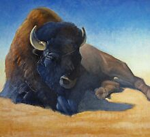 Buffalo by Greg  Marquez